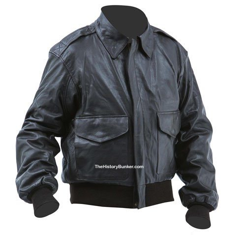500x478xa2pilotsjacket_jpg_pagespeed_ic_8jlvikwltz